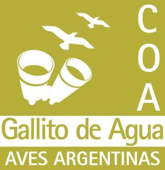 COA Club de Observadores de Aves – Gallito de Agua